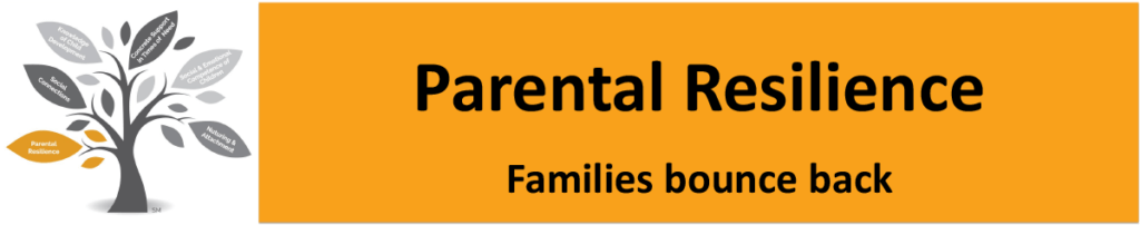 Parental Resilience: Families Bounce Back