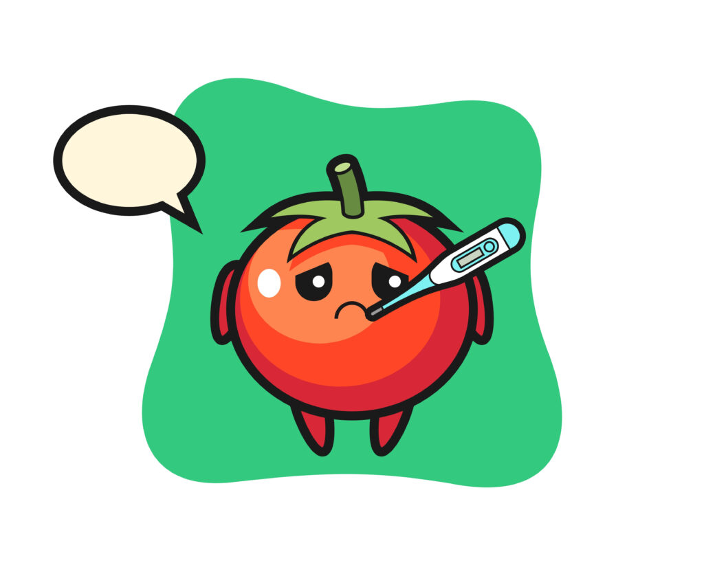 Tomatoes mascot character with fever condition